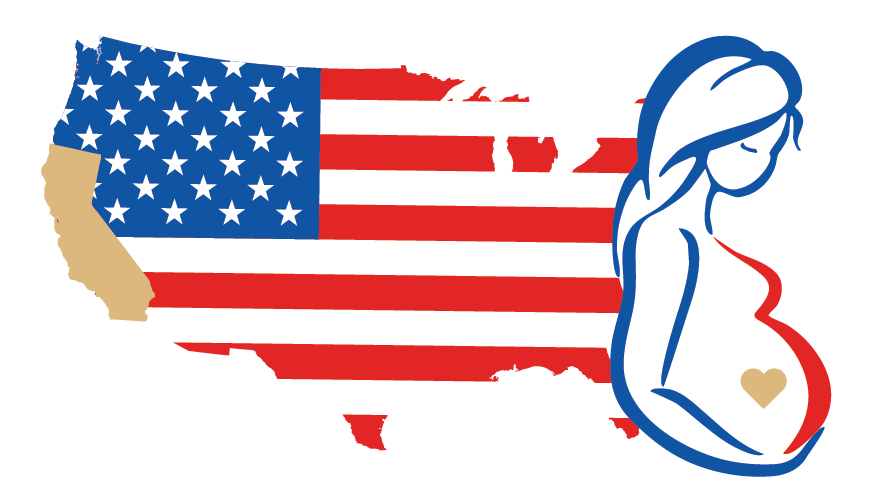 Clipart of the United States and pregnant woman